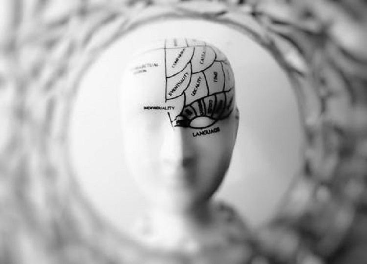 Hjärnans olika centra